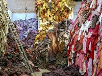 Fast fashion production processes damaging environment