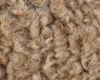 Sustainable fibres in focus for commercial production