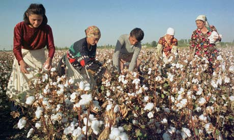 Uptake of sustainable cotton needs a boost from