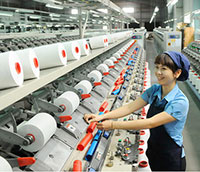 Government policies needed to boost Vietnam's exports to CPTPP countries