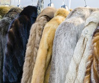 Shift from real to fake fur, is it sustainable?